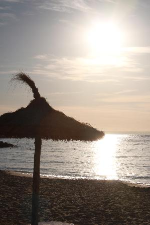 Globales Palmanova: Get to the beach early to see a sunrise like this :-)