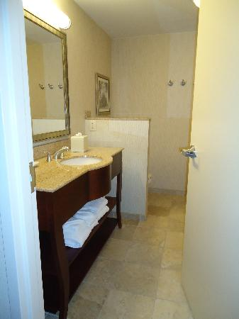 Hampton Inn & Suites Washington-Dulles International Airport: Bathroom