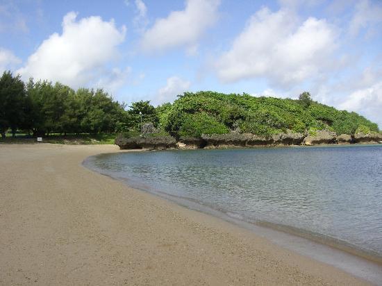 Tiger Beach : ビーチ