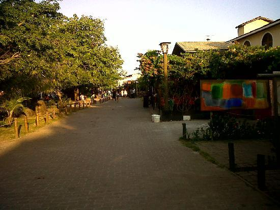 Ogum Marinho : Praia do Forte Village