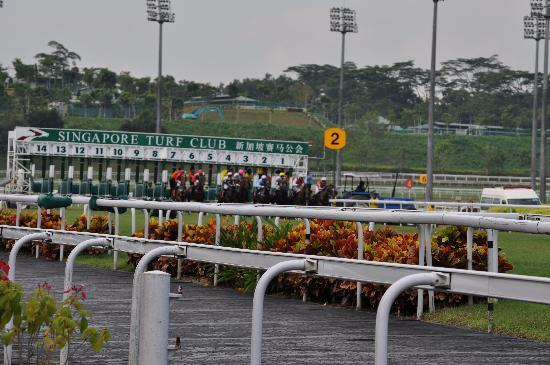 Singapore Turf Club: And they're racing