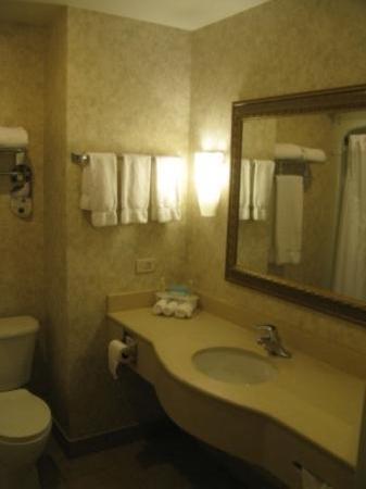 Holiday Inn Express Suites Gananoque: Salle de bains