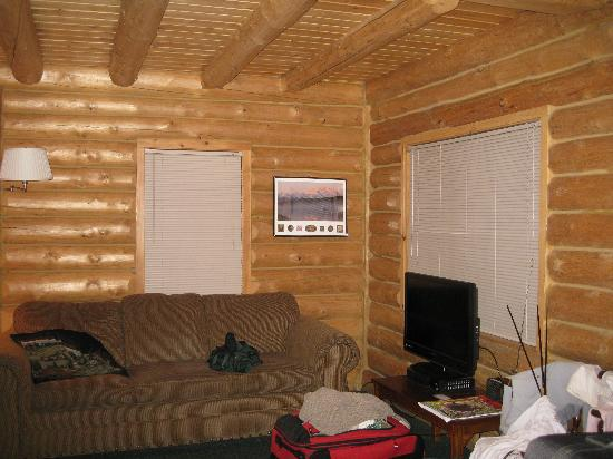 Talkeetna Cabins: nice living room