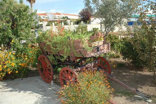 Pela Hotel: Delightful gardens