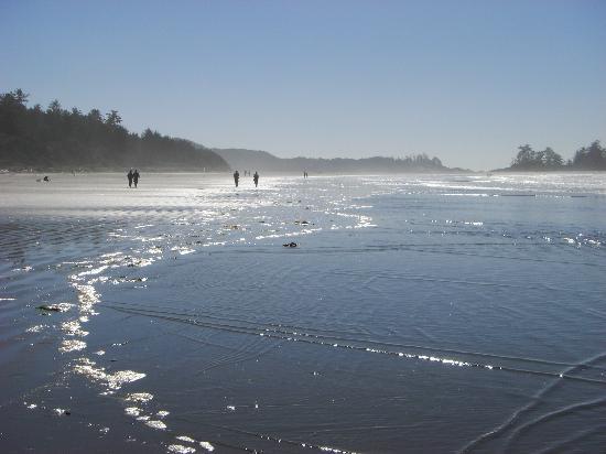 Chesterman Beach: View along the beach
