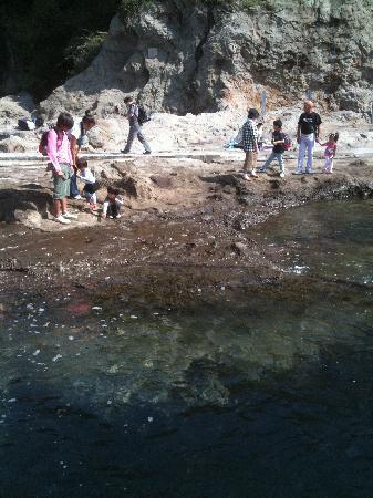 Chigogafuchi Marine Plateau : 稚児ヶ淵はファミリーに人気2