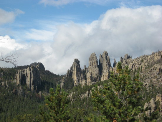 Black Hills Maze : ABOUNDING BEAUTY