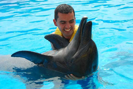 Dolphinaris Cancún: The best...!