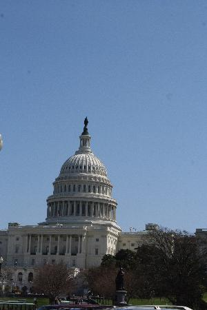 Washington DC, DC: Capital Building