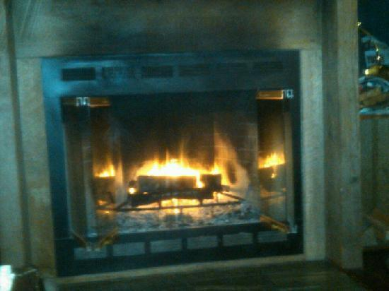 Sandlake Country Inn : Real Fireplace in Timbers Suite
