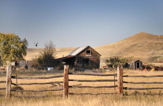 Triangle Ranch Bed & Breakfast 사진