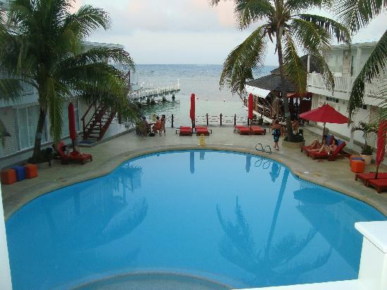 Decameron Los Delfines: la piscina y el mar desde arriba