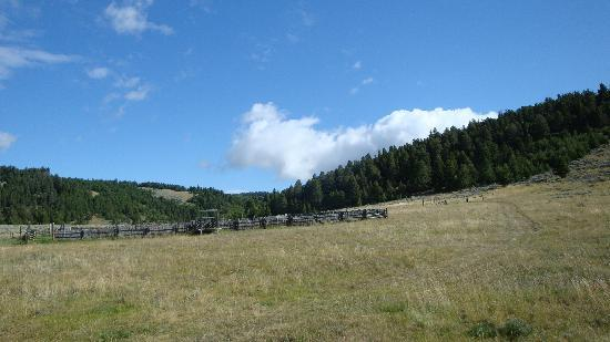 Bonanza Creek Guest Ranch: yep pee
