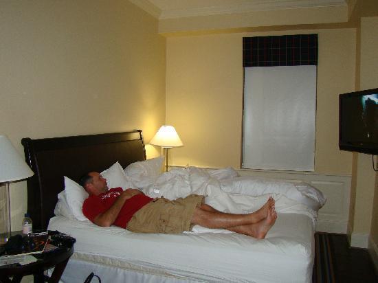 Sheraton Columbia Downtown Hotel: nice bed,tiny area
