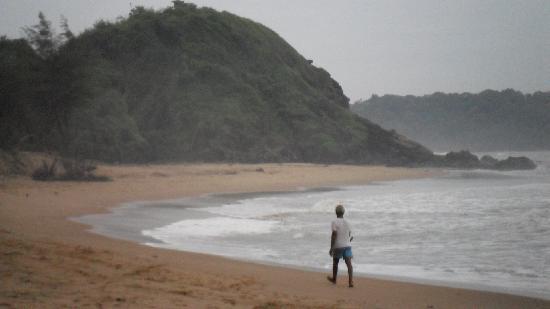 Seaview Resort: palolem beach