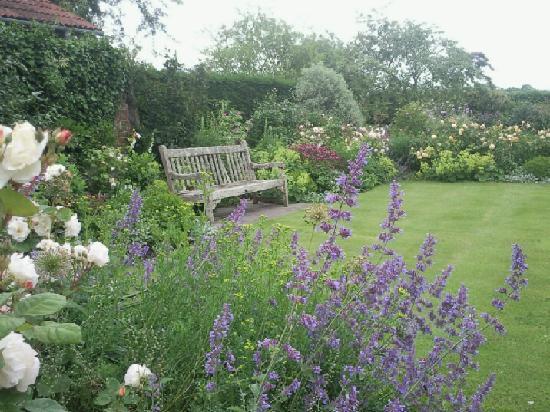 Westbrook House B&B : Garden in summer