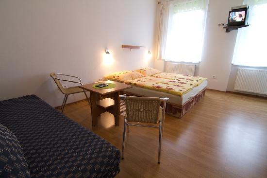 Pension A5A, Karlovy Vary - Double room