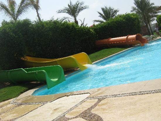 Piscina con scivoli picture of club sharm el sheikh - Piscine con scivoli ...