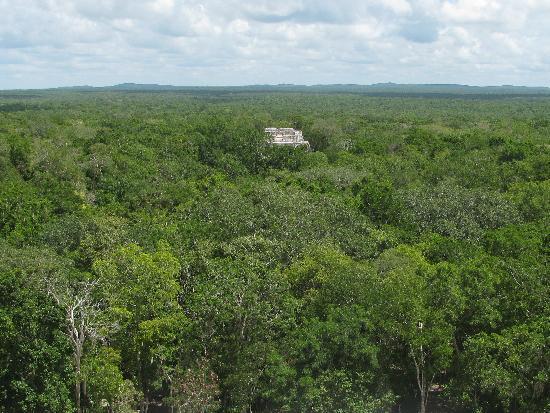 Restaurant y Hotel Calakmul: Ruinen in Calakmul