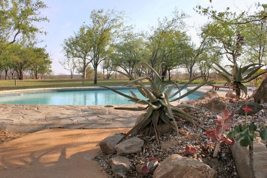 Silonque Bush Estate & Spa: Swimming Pool