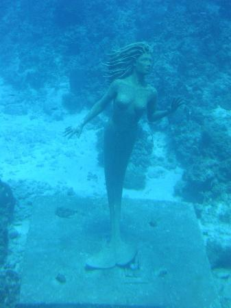 George Town, Gran Caimán: Mermaid statue under the water in Caymans