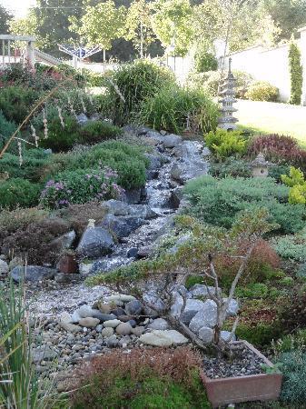 Dungarvan, Ireland: Beautiful landscaping in the yard