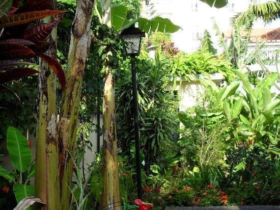 Vila Vicencia: A look into the gardens
