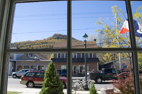 Catskill Lodge Bed and Breakfast: Looking out from the cafe/store in Hunter