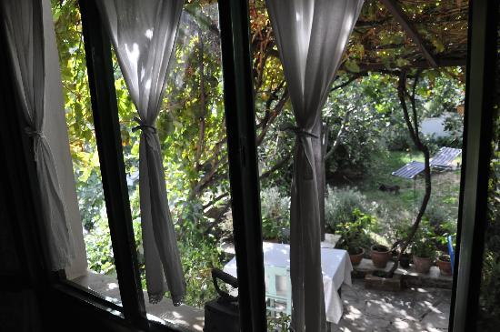 Nisanyan Evleri Hotel: View on the garden
