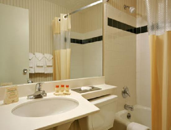 Days Inn Henrietta/Rochester Area: Bathroom
