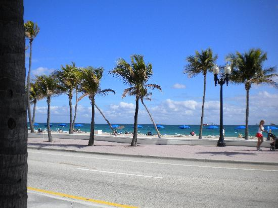 Fort Lauderdale, Flórida: Gorgeous View