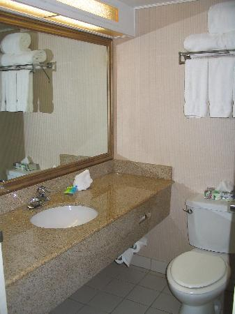 Radisson Hotel Sudbury: Bathroom - small