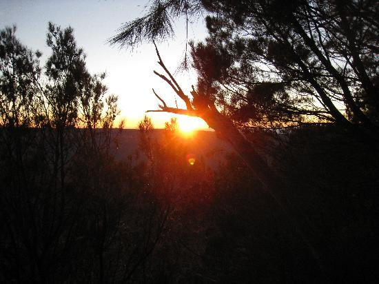Kenthurst, Australia: Sunrise meditation