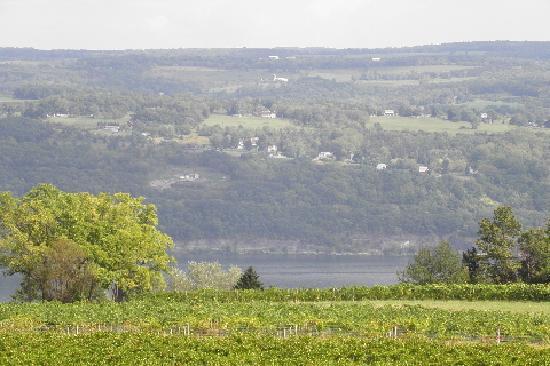 Castel Grisch: Seneca Lake/very like the Rhine Valley