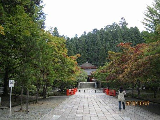 Koya-cho, Japón: 紅葉にはまだ早かった