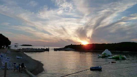Vrsar, كرواتيا: Sonnenuntergang am Hafen