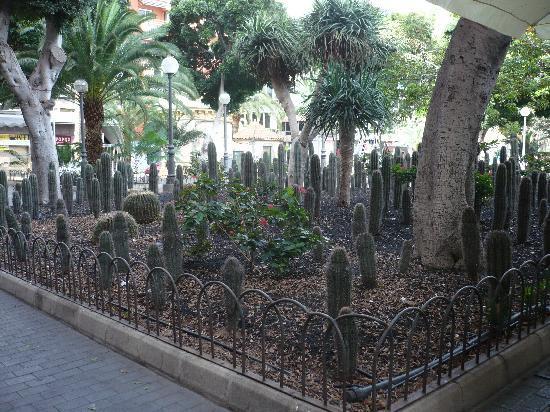 HL Sahara Playa: Parque Sta Catalina. Las Palmas