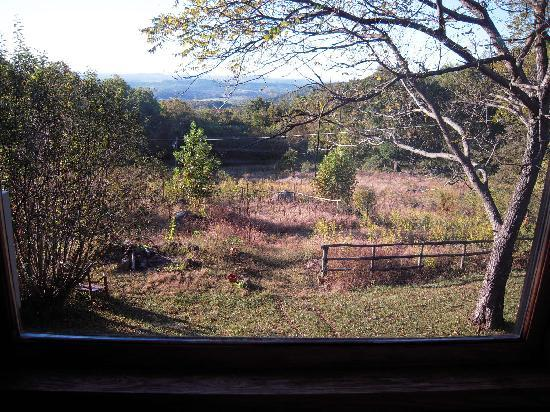 Otter's Den Bed & Breakfast: great view from window
