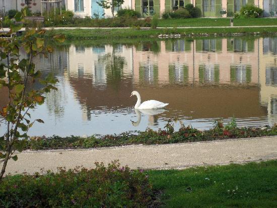 Marriott's Village d'lle-de-France: Swan