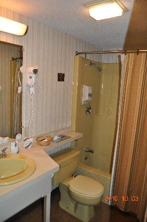 Wildwood on the Lake: Adequate bathroom
