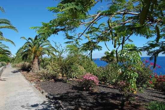 La Gomera, Hiszpania: Lots of subtropical gardens