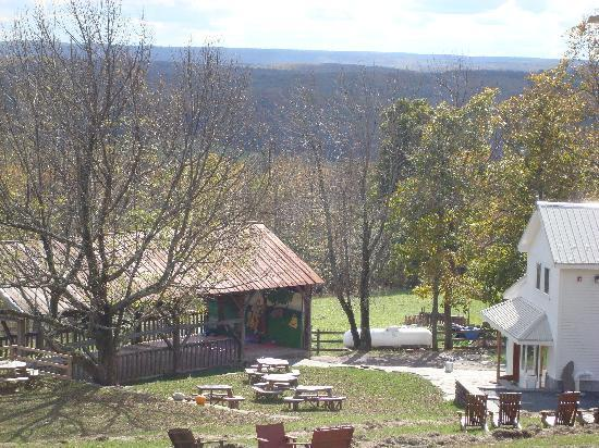 Sivananda Ashram Yoga Ranch: the view