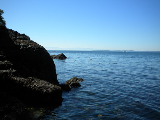Isla de San Juan, WA: Whale watching at the state park
