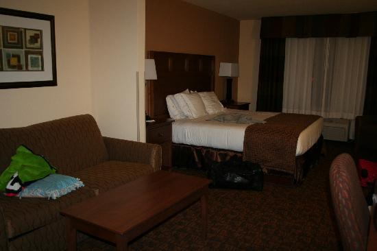 Holiday Inn Express Hotel & Suites Mount Airy South : King Bed with sofa sleeper room