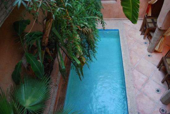Riad Azenzer : Pool