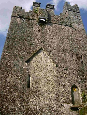 Dunsandle Castle and Woods: Rückansicht
