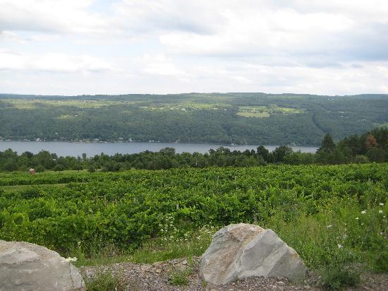 An Unexpected Pleasure Review Of Canandaigua Ny