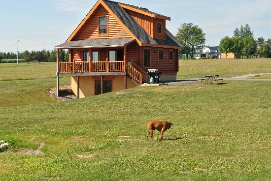 Cobtree Vacation Rental Homes Resort: Our log cabin.