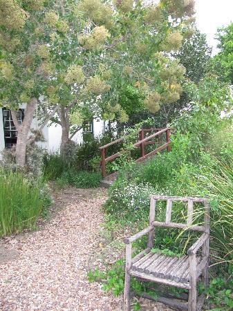 Roosje van de Kaap: The garden