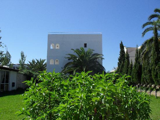 Hotel Club La Noria: garden area